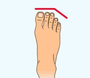 شكل القدمين